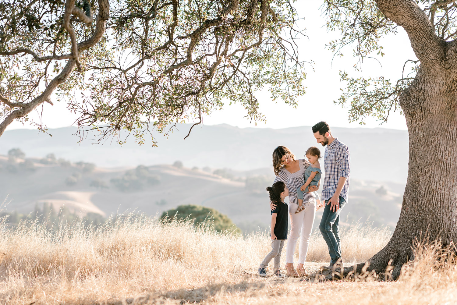 mount_diablo_family_session_golden_grasses-11